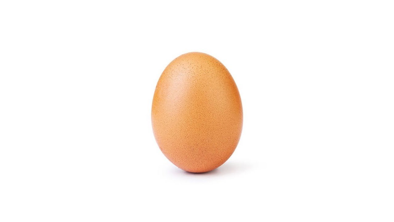 Image result for egg instagram