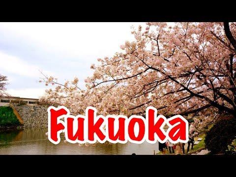 Travels in Japan (Part Five) [Fukuoka Pt 1]