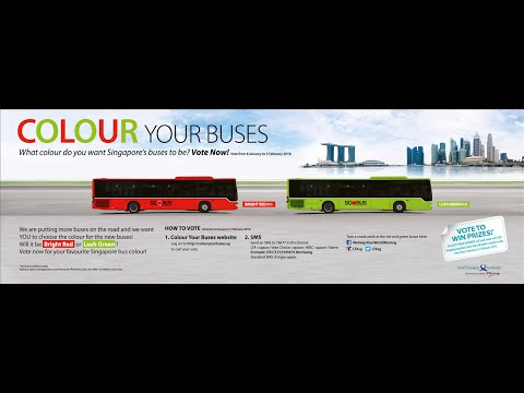 Colour Your Buses
