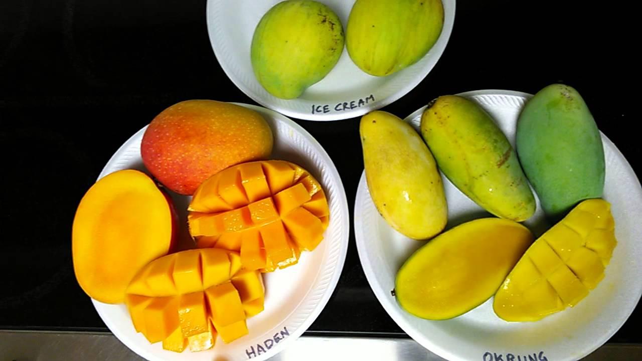 Weird Tropical Fruit Okrung Mango Youtube