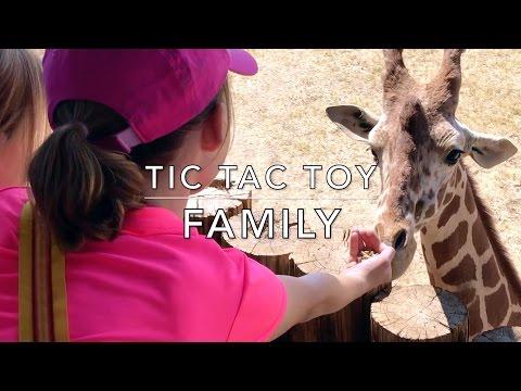 World Wildlife Zoo & Aquarium Field Trip - Tic Tac Toy Family Vlog #2