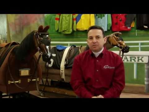 How to Retrain a Thoroughbred Horse
