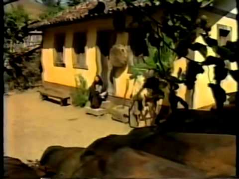 O Guarani: Capítulo 01