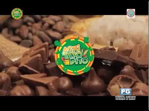 AGRI TAYO DITO: CACAO SPECIAL 2017 AGRICULTURE STORY OF THE YEAR