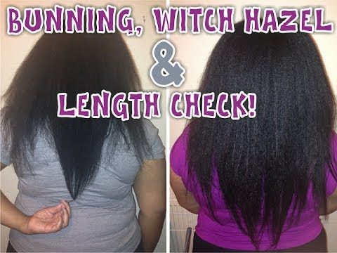 """How I """"Wash"""" My Hair While Bunning, Witch Hazel & A Length Check"""