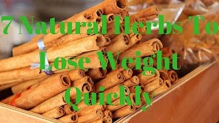 7 Natural Herbs To Lose Weight Quickly