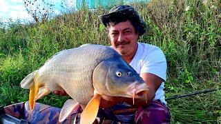 Вито перевернул водоём Опять поймал огромного карпа Заключительная часть фильма Водоём AQUA