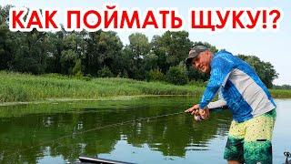 Рыбалка Учимся ловить ЩУКУ летом