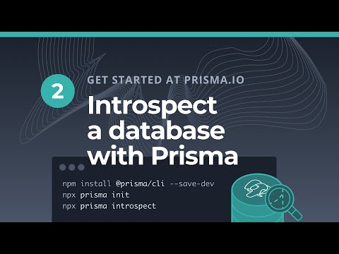 Introspect A Database With Prisma (2/5)