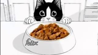 """Реклама кошачьего корма """"Феликс"""""""
