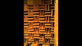 Paradigm Speakers Anechoic Chamber