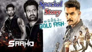 Special Video On Operation Gold Fish Movie || #Aadi, Sasha Chettri, || OGF Teaser |