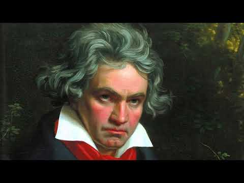 Beethoven - Symphony No. 5 in C minor [High Quality Classical]