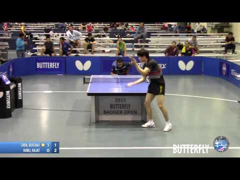 2015 Butterfly Badger Open - Open Singles Semi-Final