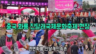 5.1절 연변화룡 진달래국제문화축제 현장(화룡진달래민속…