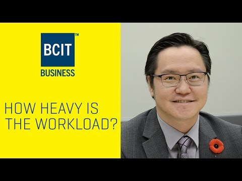 How Heavy is the Workload for a BCIT Business Student?