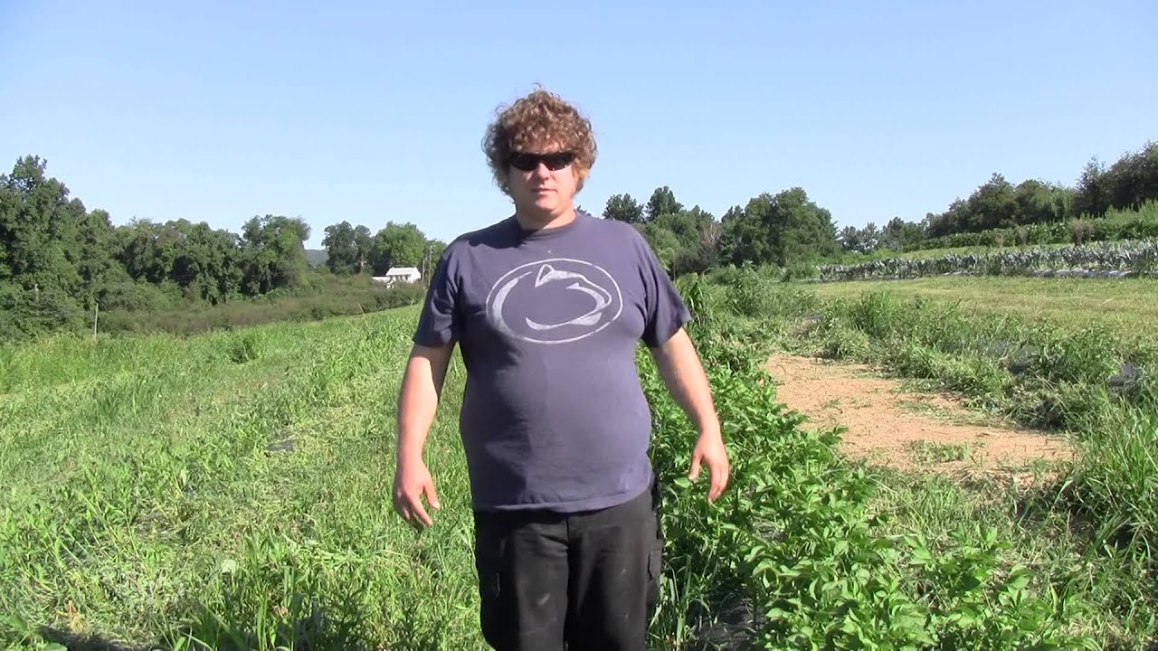 Image result for Potato Grower Interview