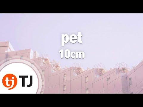 [TJ노래방] pet - 10cm / TJ Karaoke