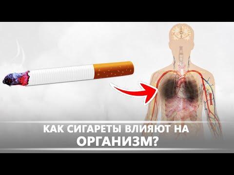 Как сигареты влияют на организм | DeeaFilm
