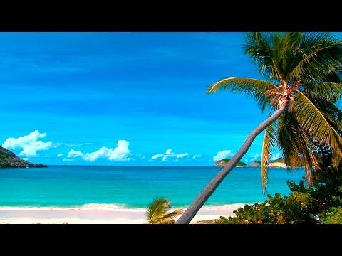Relaxar - Som do Mar e Praia Linda - Para Relaxar