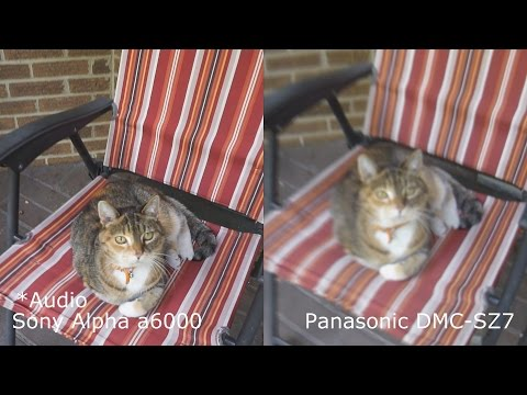 Side By Side Image Stabilization Test of the Sony a6000 Verses Old Panasonic SZ7
