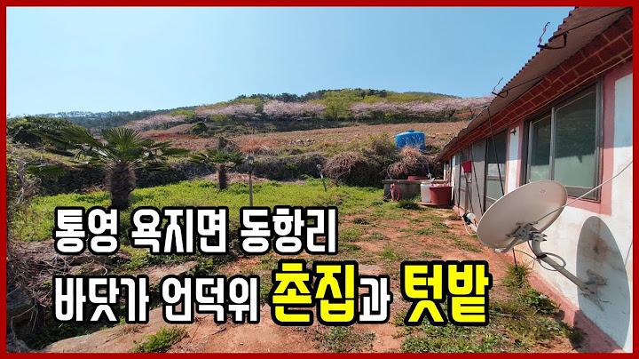 (1020)통영촌집 욕지면  동항리 바닷가 언덕위 촌집과 텃밭 토지