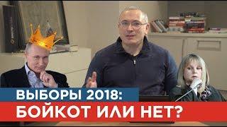 Выборы 2018: кот или бойкот?