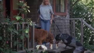Домашние хлопоты ... отрывок из фильма (За бортом/Overboard)1987