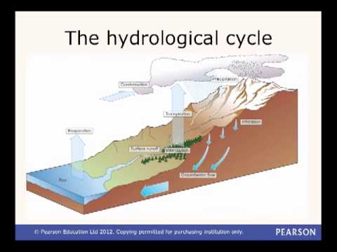 Edexcel GCSE Geography - The Hydrological Cycle