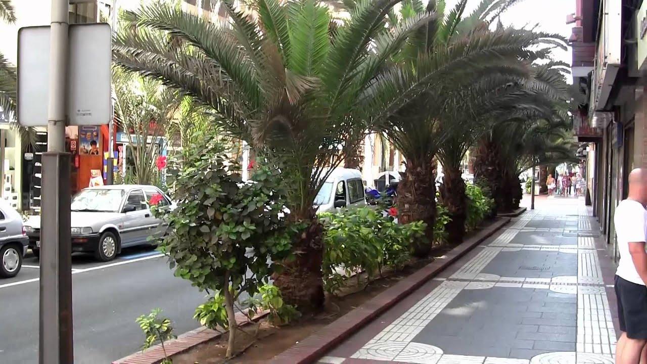 Las palmas de gran canaria youtube - Pisos com las palmas de gran canaria ...