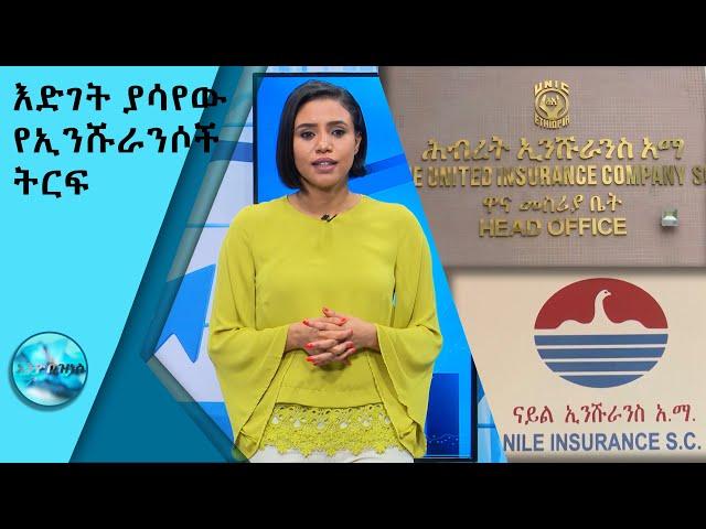 እድገት ያሳየው የኢንሹራንሶች ትርፍ/Ethio Business SE 7 EP 9