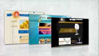 Vision Kingdom Web Designing and Development Company
