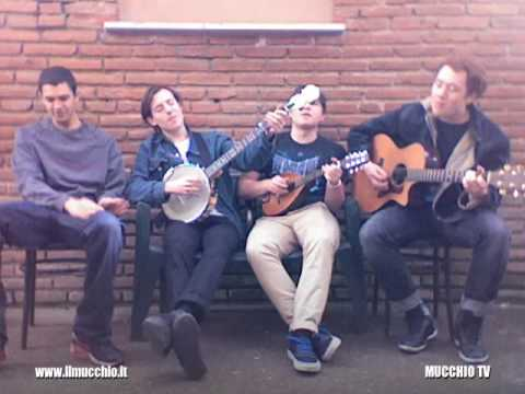 Bombay Bicycle Club - Evening / Morning (MUCCHIO TV)
