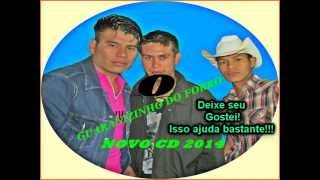 Guaranizinho do Forró CD Completo