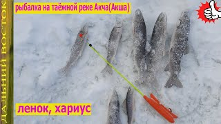 Рыбалка на таёжной реке Акча Акша Ленок хариус