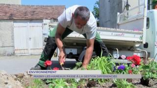 Environnement : Magny-Les-Hammeaux passe à la gestion différenciée