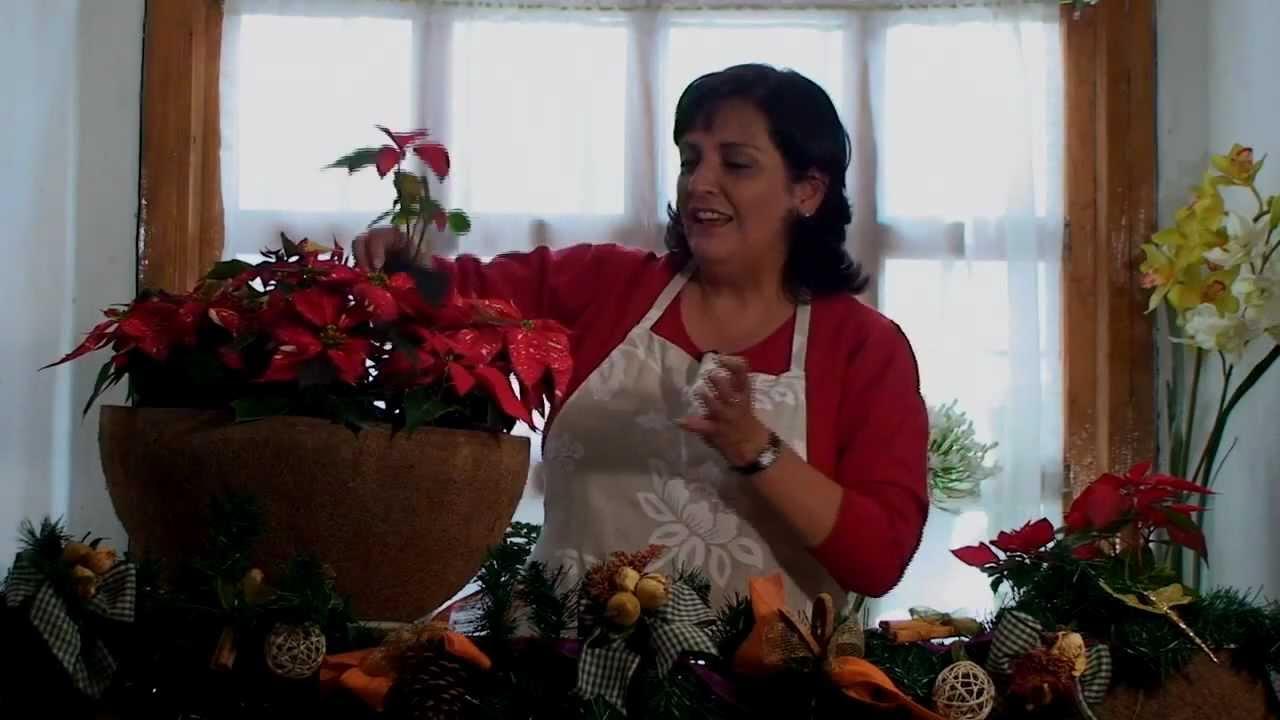 Canasta de flores de nochebuena diy poinsettia basket for Adornos con plantas de nochebuena