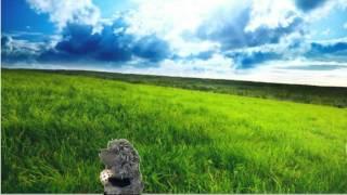 """加山雄三 """"旅人よ"""" のしみじみとした叙情性は、 """"霧の中のハリネズミ""""に..."""