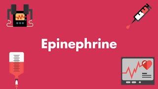 Epinephrine - Vasopressors & Inotropes - MEDZCOOL