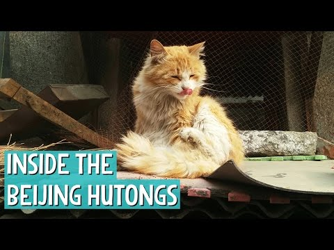 GET LOST in the Hutongs - Beijing S01E12