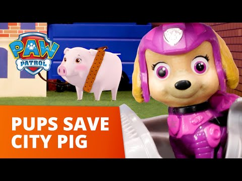 Skye and Chase Save the Silly City Piggy! 🐷 PAW Patrol Toy Pretend Play Rescue