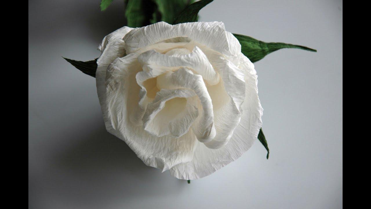 92d2951dfe7708 Kwiaty z bibuły - białe róże DIY - YouTube