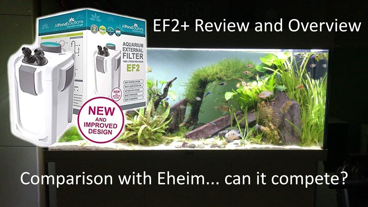 All Pond Solutions Ef2 Uv Review And Comparison With Eheim Pro 4 250 Biohome Upgrade