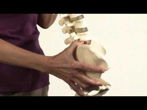 Proper Posture for a Healthy Spine