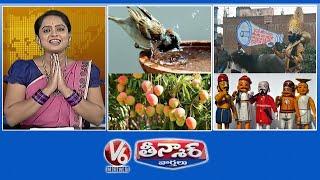 Summer Precautions-Animals |Yama Dharma-Corona Awareness | 100 Varieties Of Mango Trees |V6 Teenmaar