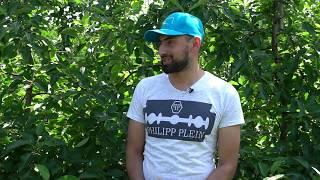 Ролик - интервью о технологии выращивания яблок