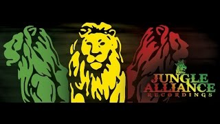 Jungle Alliance - Friday 7th November 2014 - Unity Hi Fi 10th Birthday Party