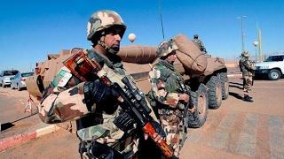 #الجيش_الجزائري يقضي على أمير فرع#داعشفي البلاد