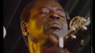 Ali Farka Touré : Live @ the Watermans Arts Center 1988 (Encore)