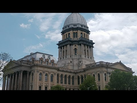 Re-Open Illinois Protest Mark 2 Electric Boogaloo